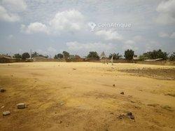Vente Parcelle 350 m² - Togba