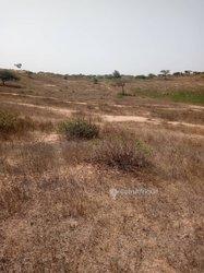 Vente terrain agricole 2Ha500 - Potou