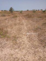Terrain agricole 2500 m² - Leona