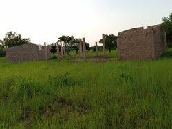 Terrain 1 hectare + Poulailler - Apelgo Ziniare
