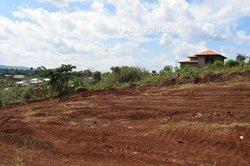 Terrain 500 m2 - Yaoundé