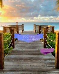 PDF- 500 idées du business