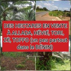 Vente Hectares  de terrain - Bénin