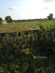 Terrain Agricole 1047 m2 - Abidjan Plateau
