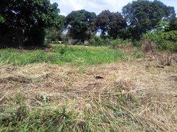 Terrains 525 m²  - Brazzaville