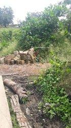 Terrains agricoles 500 ha - Adzopé
