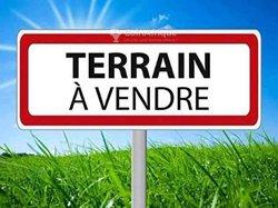 Terrain 1 ha - Senou