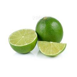 Plante de citronnier greffé