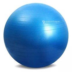 Ballon de gym fitness