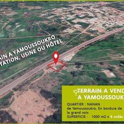 Terrains  - Yamoussoukro