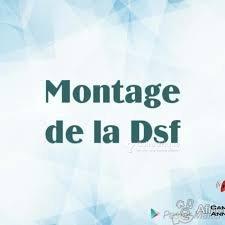 Montage DSF- Déclarations Statistiques et Fiscales