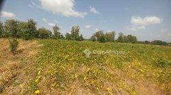 Vente Terrain agricole 45 hectares - Notse Batoume