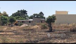 Location Poulailler - Keur Ndiaye Lo