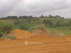 Terrains 500 m²  - Yamoussoukro