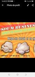 Poulets de chair - 2 kilos