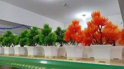 Pots de fleur de décoration