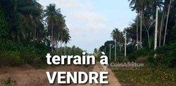 Terrains 800  m² - Yamoussoukro