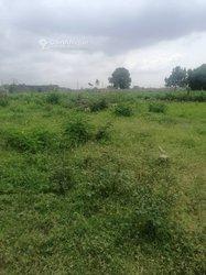 Terrains agricoles 600 m²  -  Cocody