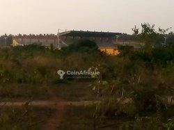 Terrains 500 m2 - Ouidah