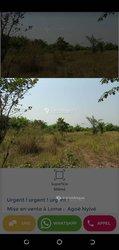 Vente Terrains agricoles 200 ha - Zio