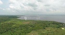 Vente Terrain 25000 m² - Jacqueville Akrou