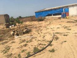 Terrain agricole de 5500 m² à Ndiar