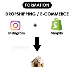 Formation en Dropshipping