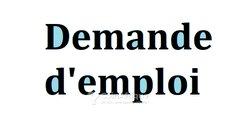 Cherche emploi - gérant de multiservices