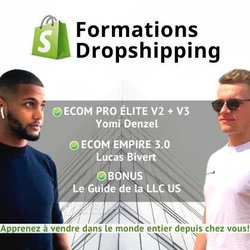 Formation Dropshipping
