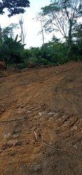 Terrains agricoles