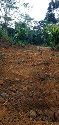 Terrain agricole - Okwoa Maria