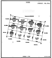 Vente Terrain - Ouidah