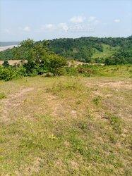 Vente Terrain agricole 56 ha - Agboville
