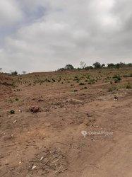 Terrains 500 m2 - Yamoussoukro