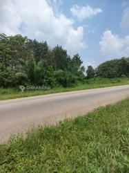 Vente Terrain agricole 8 ha - Azakiue