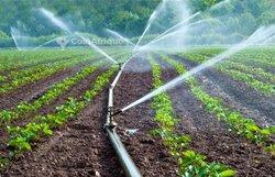 Installation de système d'irrigation