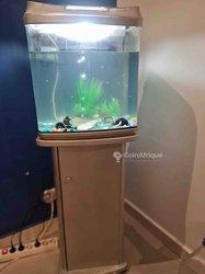 Aquarium à 3 poissons