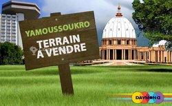 Terrain   500 m2 - Yamoussoukro