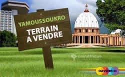 Vente Terrain 2000m² - Yamoussoukro