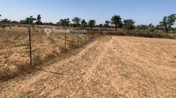 Terrain agricole 5,30 hectares - Mandagry