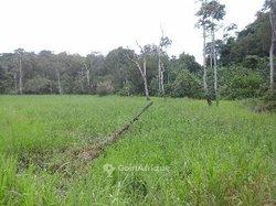 Vente Terrains agricoles  - Tsévié