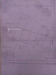 Vente Terrain 1/2 hectare - Ouidah