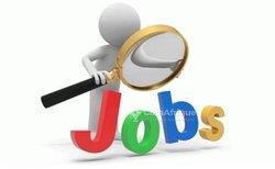 Offre d'emploi- Accueil clientèle