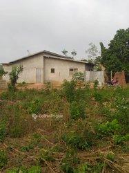 Vente Maison ordinaire 7 pièces - Togba Coinviè
