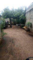 Vente terrains 350m2 - Cotonou