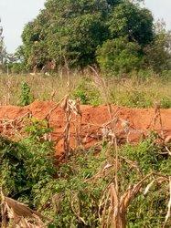 Vente terrains 500m2 à Hèvie