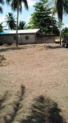 Vente Terrain 500 m² - Ouidah