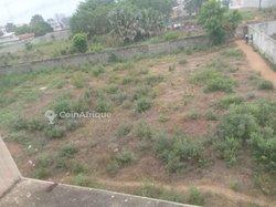 Terrain agricole 1 ha - Oumako