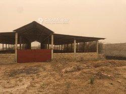 Ferme 11,3 hectares - Keur Sega
