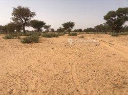 Terrain agricole 1,02 hectare - Fiyaye
